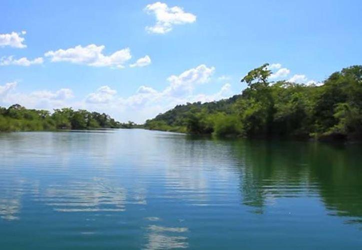 En la zona de la Biósfera Maya están contenidos 2.2 millones de hectáreas de bosque y el 13 por ciento de los espejos de agua dulce de Guatemala. (YouTube/Notimex)