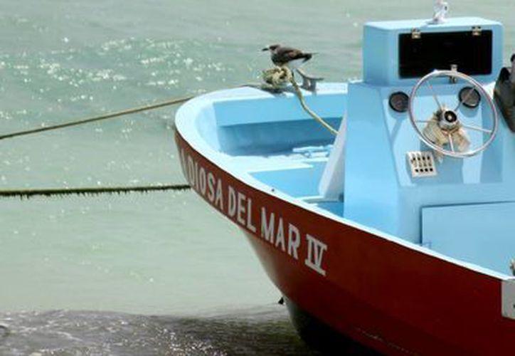 Los formatos para que los pescadores puedan gozar del apoyo de Propesca se empezaron a entregar esta semana a través del Ayuntamiento.  (Adrián Monroy/SIPSE)