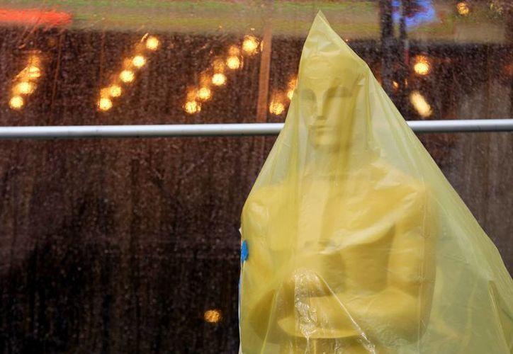 Los Oscar, especialmente este año, dejarán en suspenso a todos hasta el final. (Agencias)