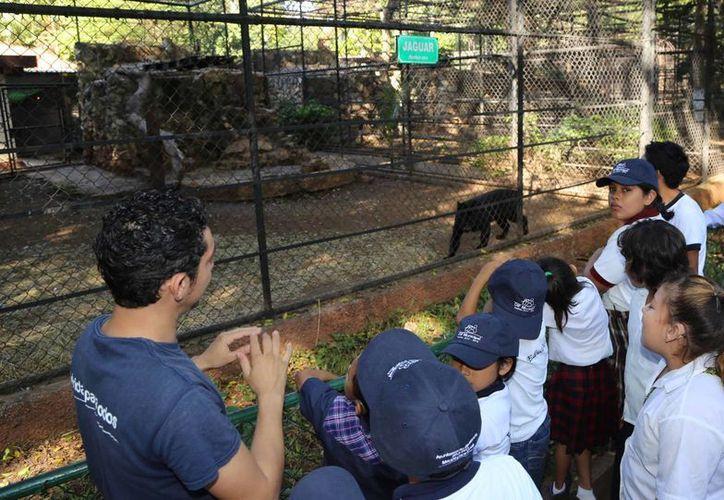 El zoológico del Centenario es una buena opción para visitar en estas vacaciones de Semana Santa. (SIPSE)