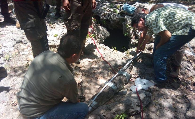 Decenas de personas, entre ellas buzos especializados, participaron en la jornada de limpieza del cenote. Los expertos realizaron diversas maniobras para sacar al cocodrilo. (Alejandro Castro)