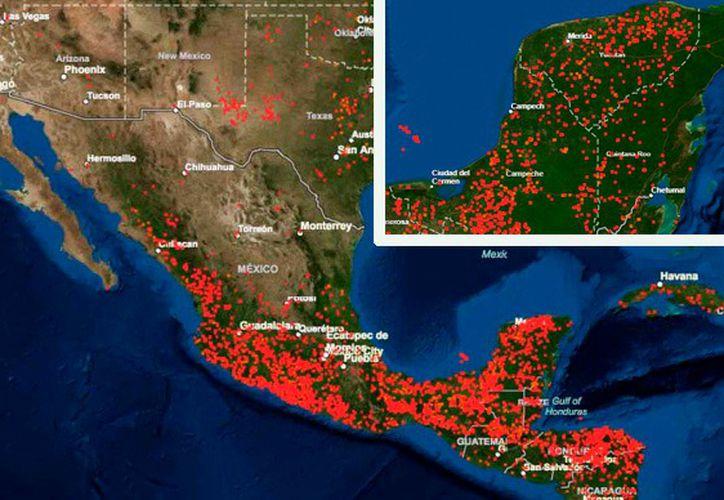 En la entidad al día se registran entre 15 y 20 reportes ciudadanos sobre incendios. (Novedades Yucatán)