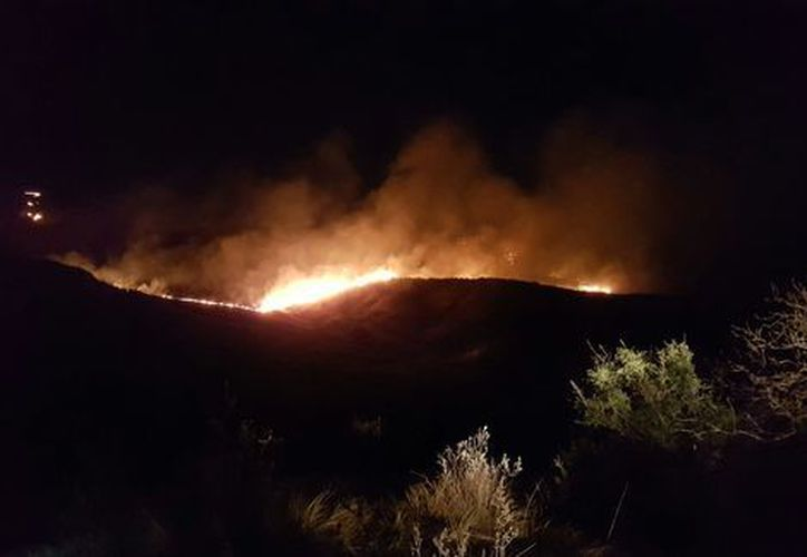 Casi 50 hectáreas fueron afectadas el fin de semana según estimaciones del cuerpo de Bomberos y Protección Civil. (Milenio).