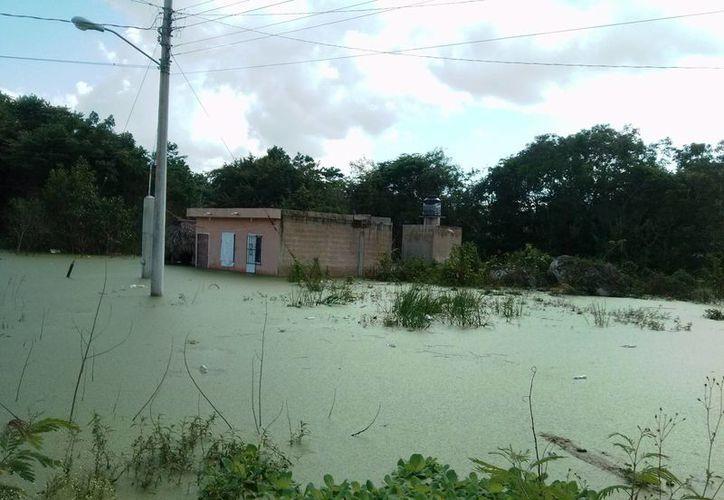 Los habitantes llevan dos meses viviendo con las inundaciones. (Rossy López/SIPSE)