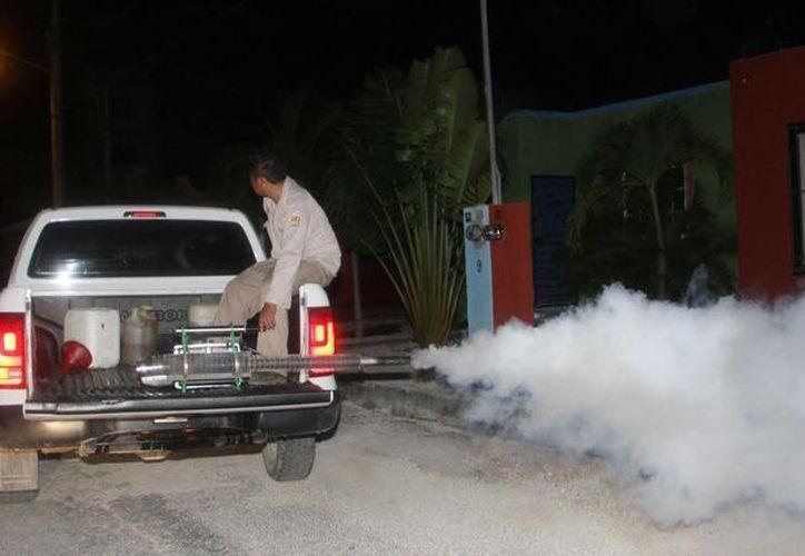 Las fumigaciones se realizan desde las 18 hasta las 22 horas en el municipio de Tulum. (Redacción/SIPSE)