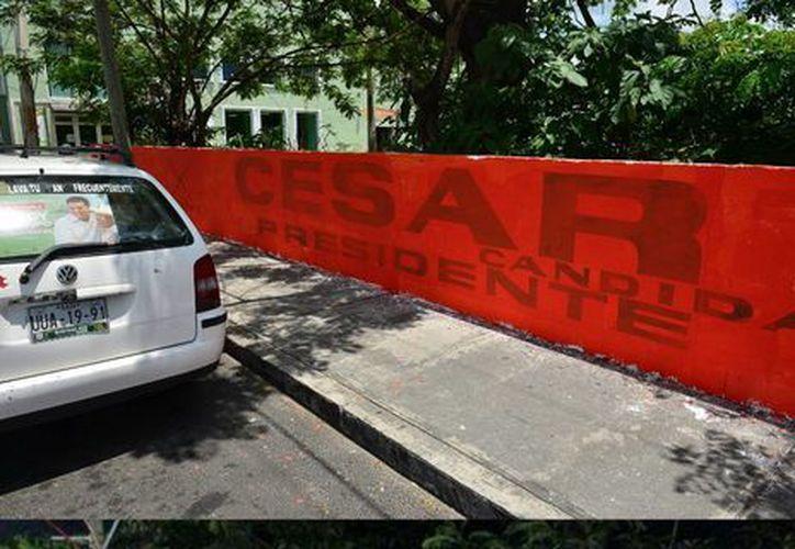 La barda con publicidad se localizada en la 11 avenida con Quinta. (Gustavo Villegas/SIPSE)