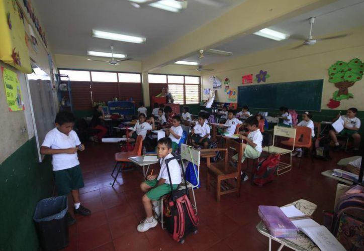 Los estudiantes de Playa del Carmen regresarán a clases hasta el próximo lunes, debido al puente por el Día del Maestro.  (Archivo/SIPSE)
