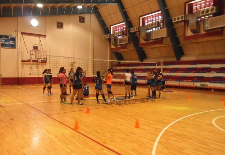 Los voleibolistas se preparan para la Olimpiada Nacional. (Ángel Mazariego/SIPSE)