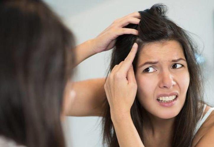 La presencia de canas en el cabello no solo responde a la edad, la información genética juega un papel importante. (Contexto/Internet)