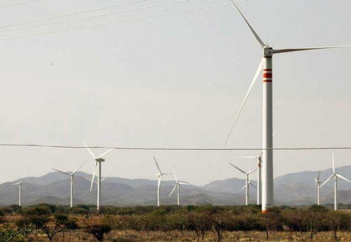 La Reforma Energética ha convertido a México en un lugar en donde vale la pena invertir en proyectos de energía eólica. (Cuartoscuro)