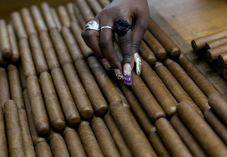 Ahora se podrá ingresar a Estados Unidos hasta 100 cigarros y varias botellas de ron desde Cuba. Imagen de una mujer en la elaboración de habanos, en la fábrica H. Upmann de la isla. (AP Photo/Ramon Espinosa, File)
