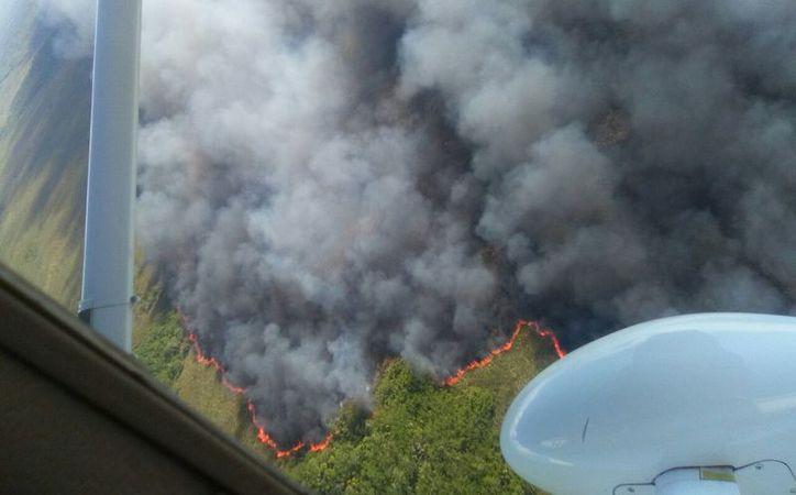 Los incendios forestales en Yucatán han consumido más de 830 hectáreas, y han afectado incluso reservas ecológicas. La imagen está utilizada sólo como contexto. (Archivo/SIPSE)