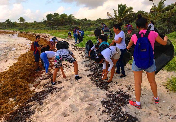 Durante la limpieza de la playa en Xcacelito, participaron 45 personas. (Foto: Redacción)