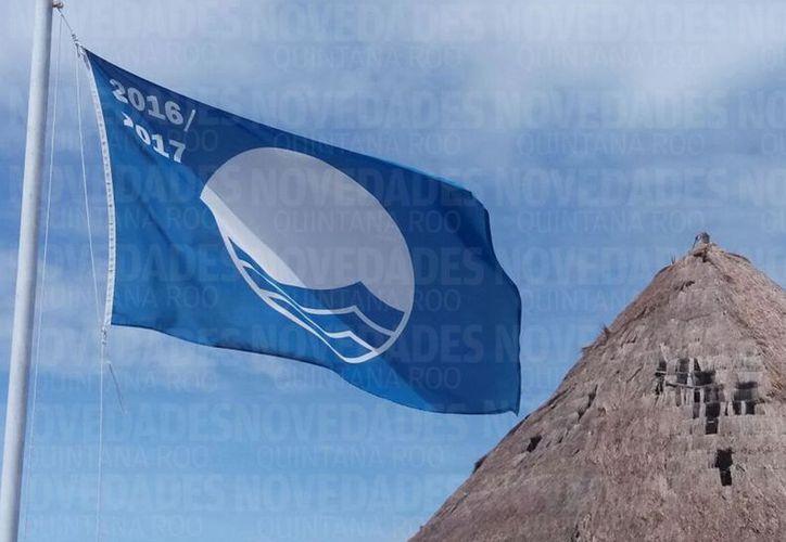Los criterios que establece Blue Flag México para conservar el distintivo se deben cumplir 33 criterios englobados en cuatro categorías. (Javier Ortiz/SIPSE)