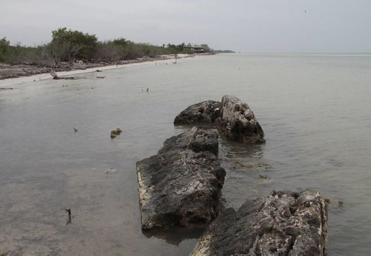 Las dunas playeras y las áreas de anidación de las tortugas serán protegidas. (Israel Leal/SIPSE)