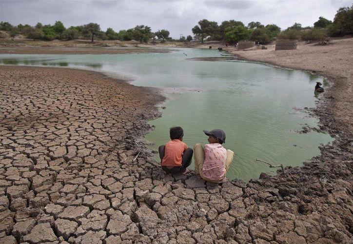 Las posibles consecuencias del calentamiento global incluyen un fuerte impacto en sistemas únicos y amenazados. (infosalus.com)