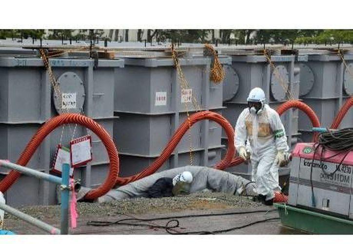 Hasta dentro de 100 años Fukushima será habitable nuevamente. (RT)