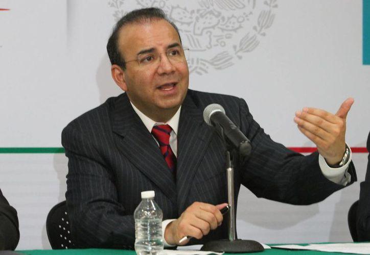 Navarrete Prida dijo que es urgente combatir el fenómeno. (Archivo/Notimex)