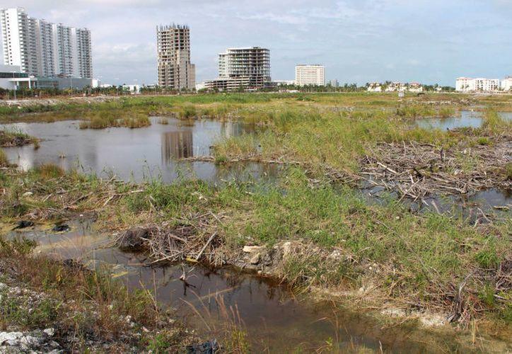 El próximo 30 de mayo organizaciones civiles realizarán un foro para hablar del futuro de Malecón Tajamar. (Luis Soto/SIPSE)