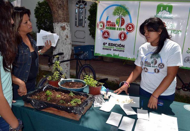 Como parte de las actividades se harán muestras de productos orgánicos. (Milenio Novedades)