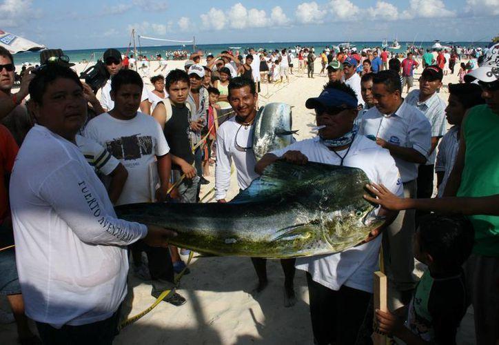 Playa del Carmen ofrece diversas actividades como torneos de pesca para el disfrute de los distintos públicos. (Archivo/SIPSE)