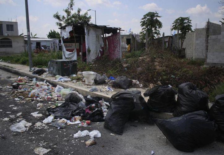 Los lotes baldíos se han convertido en basureros de la ciudadanía. (Harold Alcocer/SIPSE)