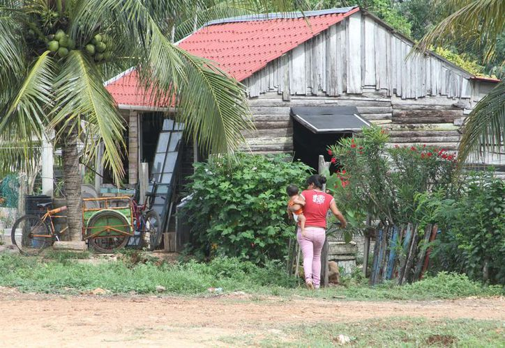 Los casos más frecuentes ocurren en las comunidades rurales más alejadas, es decir, en la zona limítrofe entre Campeche y Yucatán. (Joel Zamora/SIPSE)