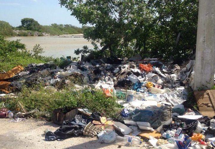 En Chelem, un basurero clandestino 'funciona' a vista y paciencia de las autoridades del Ayuntamiento de Progreso. (Gerardo Keb/SIPSE)