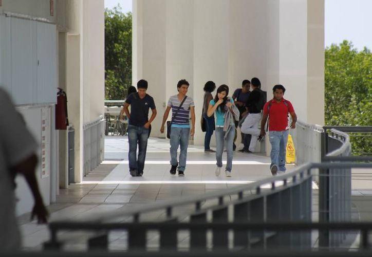 Realizarán el Seminario de Turismo y Sustentabilidad en la Universidad del Caribe. (Archivo/SIPSE).