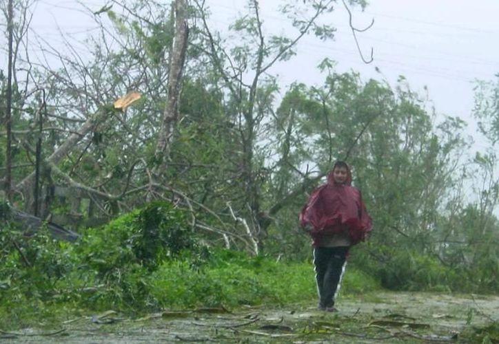 La temporada de huracanes 2017 fue muy activa y destructiva, sobre todo en el área del Caribe,  (SIPSE)
