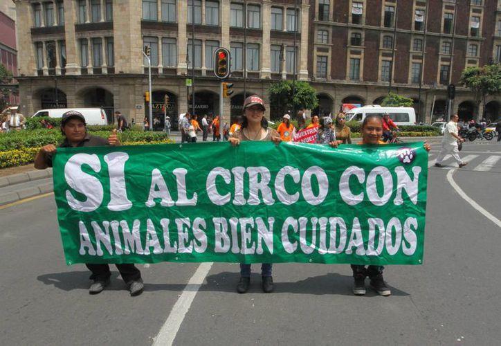 Semanas atrás, el DF prohibió la realización de espectáculos con animales, lo que despertó inconformidad de artistas y empresarios circenses. (Archivo/Notimex)