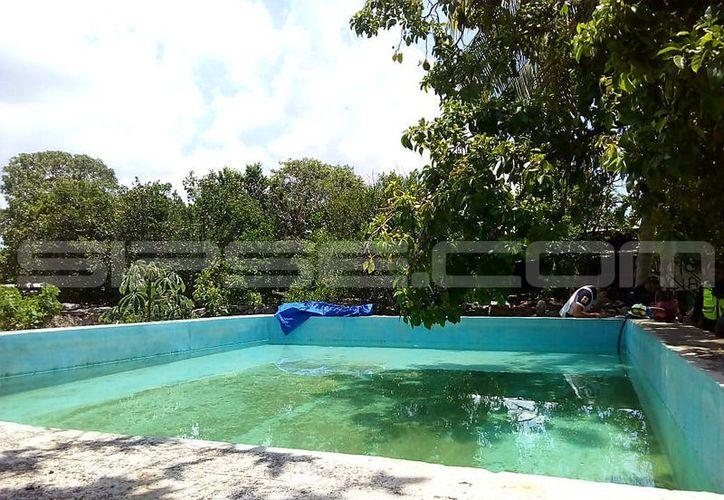 El cuerpo del hombre se encontraba flotando en la piscina. (SIPSE)