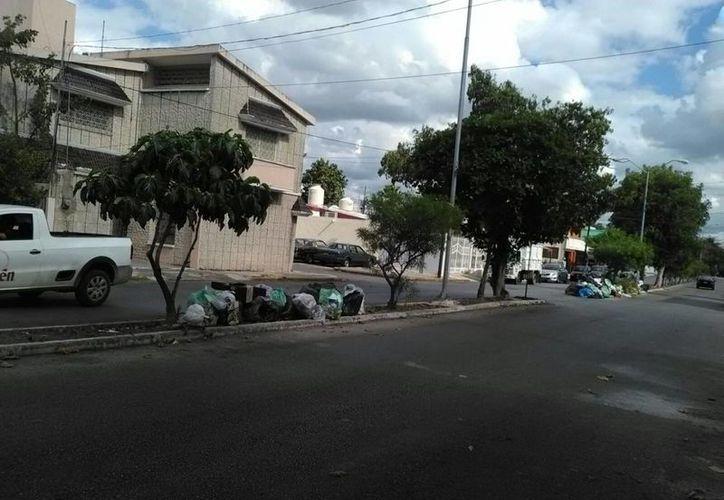 Desde que empezó el año en varios puntos de Mérida se ha acumulado la basura. (William Casanova/SIPSE)