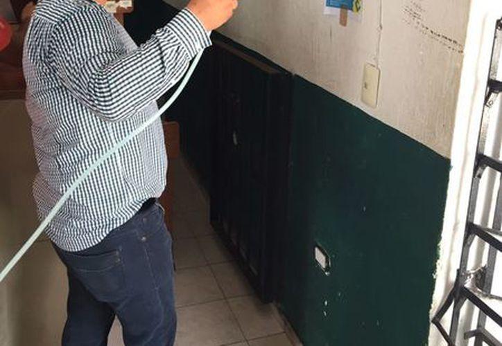 Estas medidas se han tomado ante el brote de dicha problemática de salud que se ha propagado a diferentes niveles en todo el municipio y el estado de Quintana Roo. (Daniel Pacheco/SIPSE)