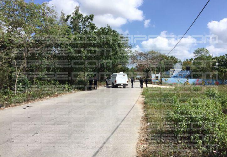 La cabeza humana fue encontrada en un área verde de Cancún. (Carlos Manzanero)