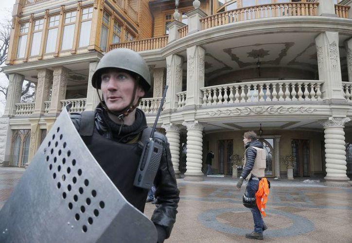 Un protestante hace guardia frente a la residencia presidencial en Mezhyhirya, Kiev. (Agencias)