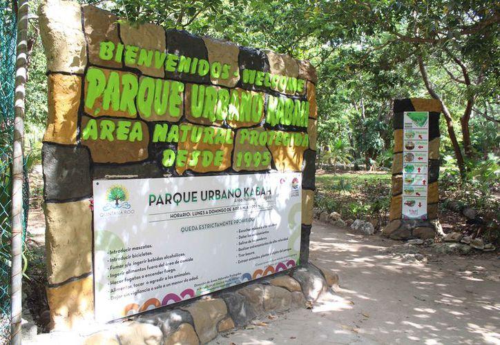 El Parque Urbano Kabah tiene más de 22 años de haber sido denominado Área Natural Protegida. (Ivette Ycos/SIPSE)