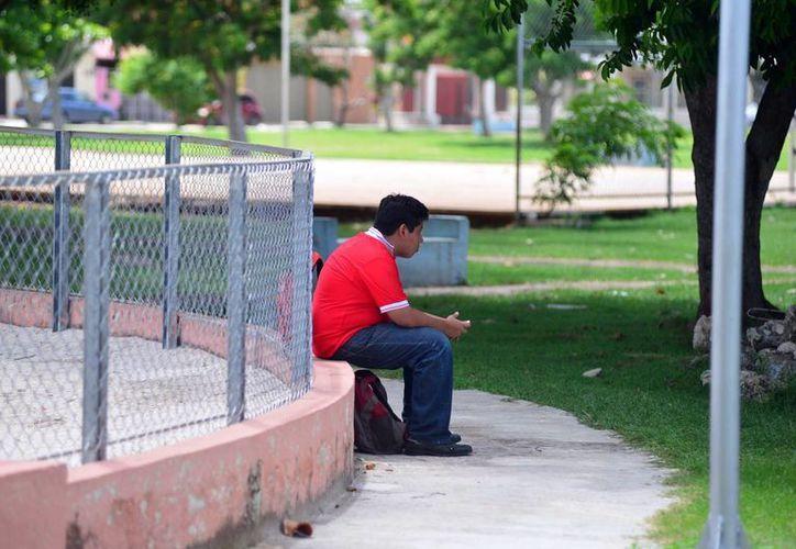 En la imagen, uno de los visitantes del parque del fraccionamiento Francisco de Montejo, ubicado en la calle 52 entre 43-A y 45. (Milenio Novedades)