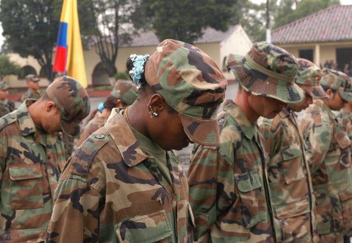 La Fuerza de Tarea Pegaso del Ejército Colombiano realizó el decomiso en el municipio de Aldana, fronterizo con Ecuador. (EFE/Archivo)