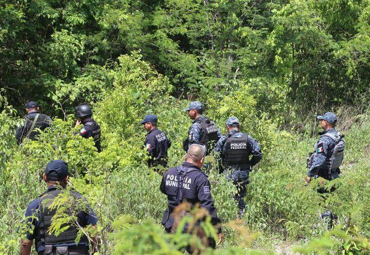 Se movilizó un grupo del Mando Único para localizar a los sospechosos. (Eric Galindo/SIPSE)