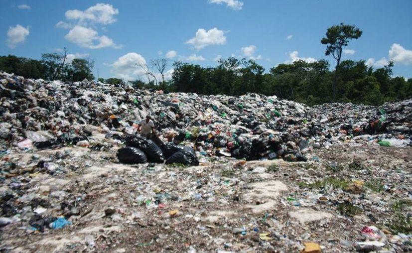 El tiradero a cielo abierto es una fuente de autoempleo para nueve personas dedicadas a la recolección de desechos sólidos reciclables como PET. (Sara Cauich/SIPSE)