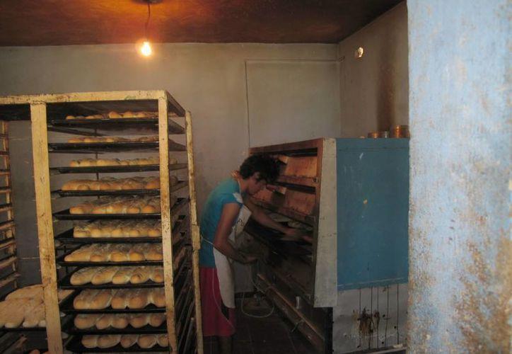 La Canainpa insta a panaderos independientes a afiliarse a la agrupación. (Milenio Novedades)