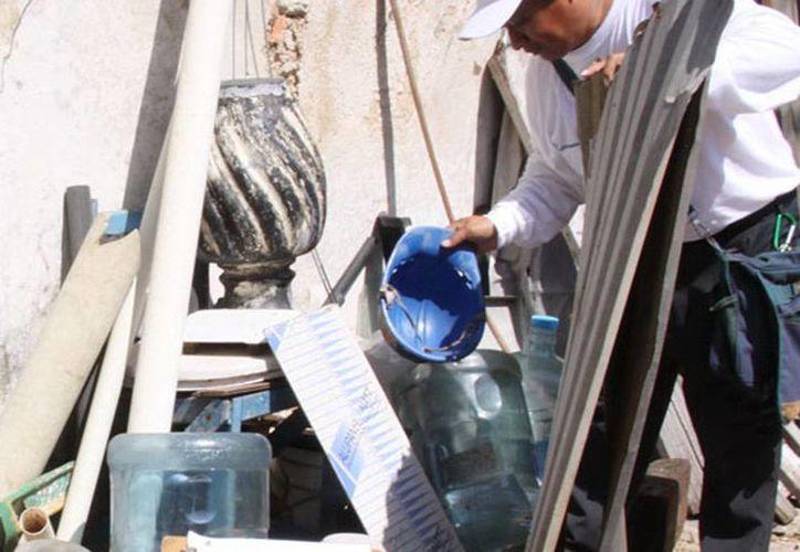 Las brigadas realizan un 'barrido' casa por casa para eliminar cacharros y evitar la presencia del mosco. (Milenio Novedades).