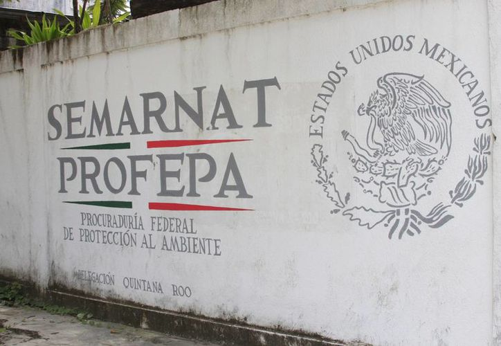 El lugar es 100% ecológico, cuenta con letrinas especializadas. (Eddy Bonilla/ SIPSE)