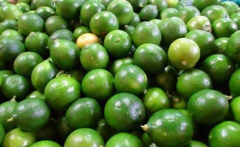 Los empacadores son causantes de los precios tan altos: Sergio Ramírez, presidente de productores de limón de Michoacán. (Milenio)