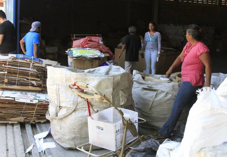 El cartón se vende a 1.20 pesos por kilo o a mil 200 pesos por tonelada. (Ángel Castilla/SIPSE)