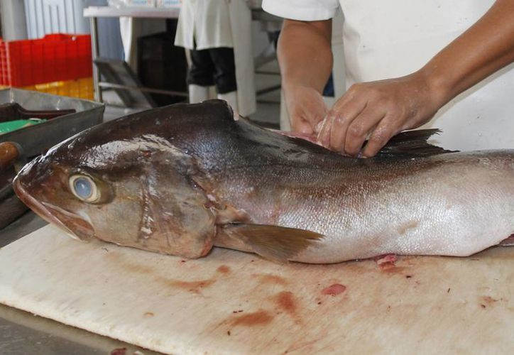 Durante el operativo la Cofepris ha tomado 64 muestras de pescado. (Jesús Tijerina/SIPSE)