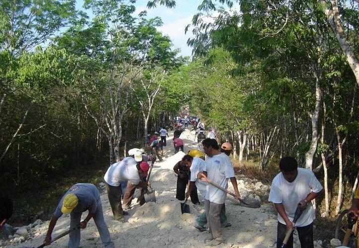 En total se atenderán 180.5 kilómetros, en el municipio de Bacalar, que requerirá la aplicación de 76 mil 88 jornales. (Javier Ortiz/SIPSE)
