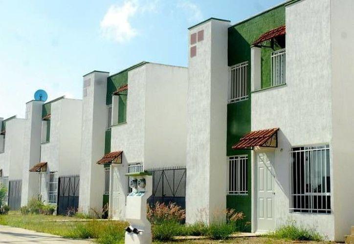 Grandes áreas verdes de Mérida han sido destruidas para construir los nuevos fraccionamientos. (SIPSE)