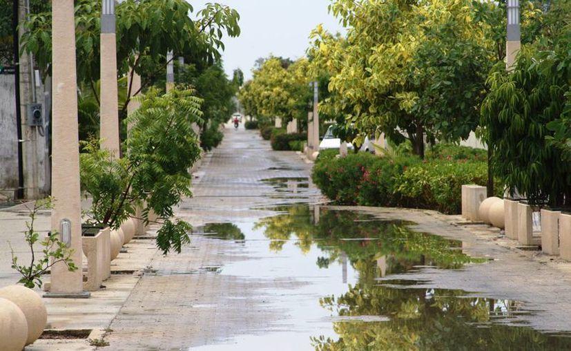 Las calles de la ciudad lucieron, en su mayoría, encharcadas, a consecuencia de las precipitaciones pluviales que se registraron ayer y los residuos domésticos que obstruyeron las coladeras. (Octavio Martínez/SIPSE)